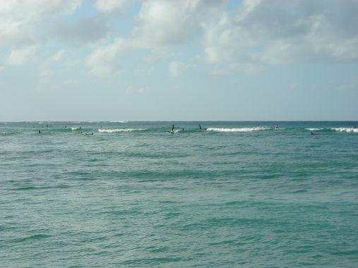 DSCN1995ハワイ-2 0215.jpg